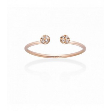 Anillo Double Gold&Roses